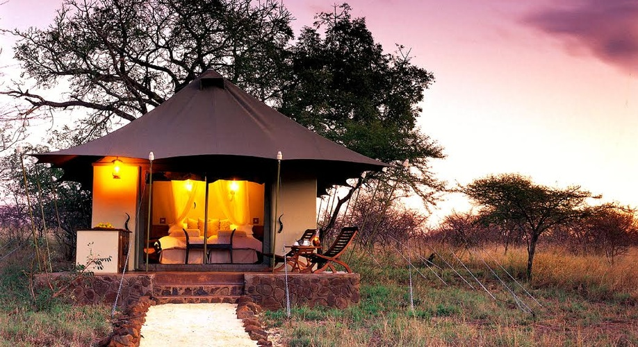 A luxurious, African Safari Exprience