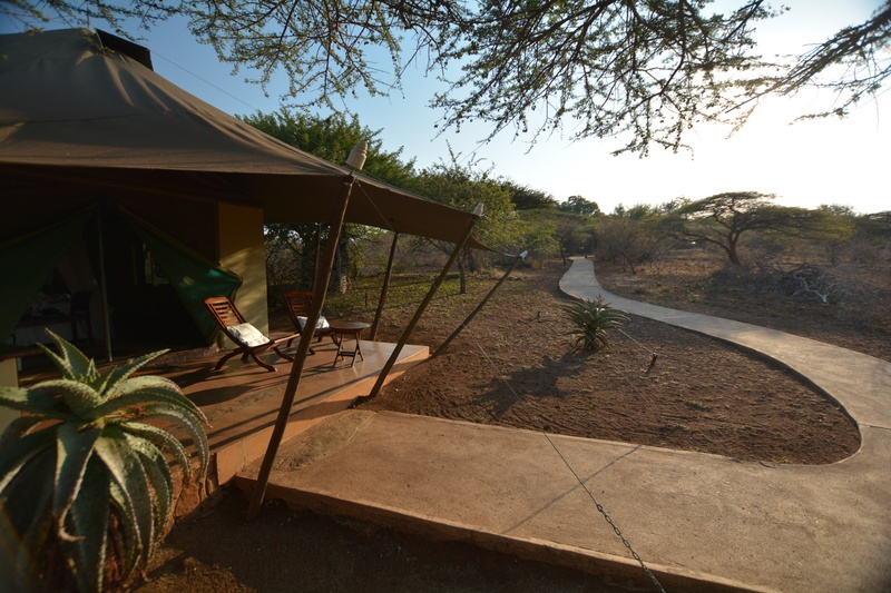... Pathway leading to tent ... & White Elephant Safari Lodge - Luxury Safari Accommodation
