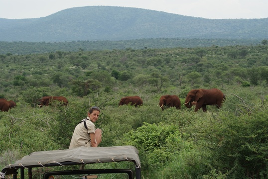 Heike observing the Elephants patiently