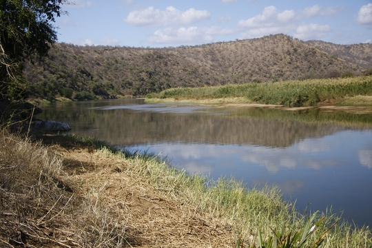 Image 11: Before: Pongola River Status / July 2009