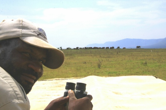 Sipho monitoring Ellies