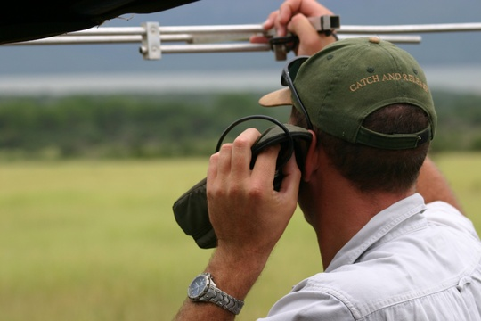 Checking for signal for black rhino